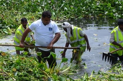 पर्यावरण संरक्षण की दिशा में कृत संकल्पित रमन कांत त्यागी जी एक ऐसी युवा शक्ति का नाम है, जिन्होंने